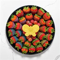Rainbow and Butterflies Platter
