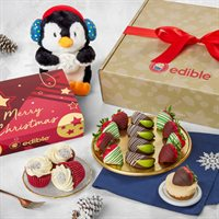 Christmas Cuddles and Gift Box